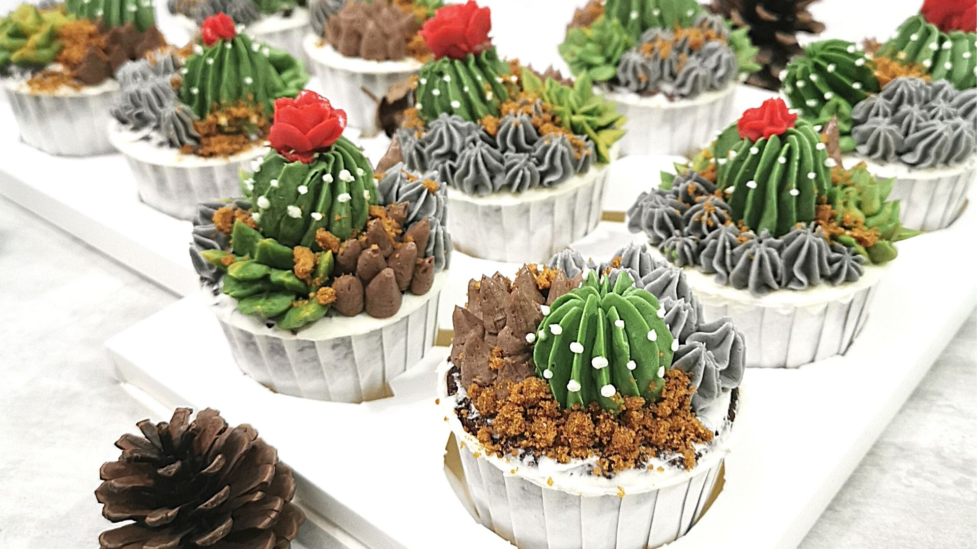 Korean Glossy Buttercream Succulents cupcakes Nanatang Studio Baking Class Banner-2